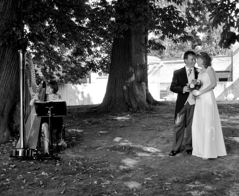 Bride, Groom and Harpist